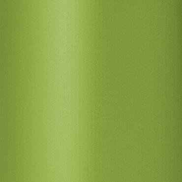 Diva Professional Styling Chromatix Dynamica 3400 Pro Hair Dryer - Lime Green