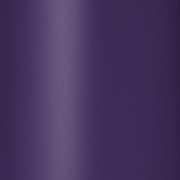 Tangle Teezer Original Purple