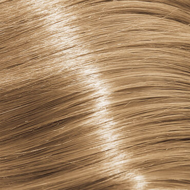Indola Permanent Caring Color Ageless Permanent Hair Colour 9.03 Very Light Blonde Natural Gold Intense Blondes 60ml