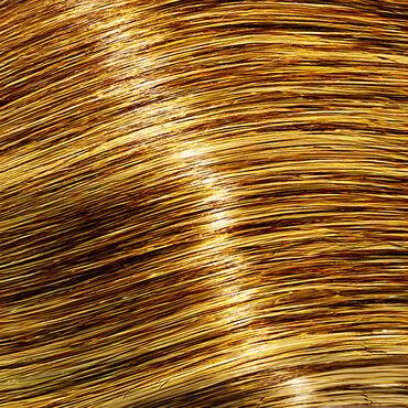 L'Oréal Professionnel #Colorfulhair Flash Pro Hair Make-Up Gold Digger 60ml