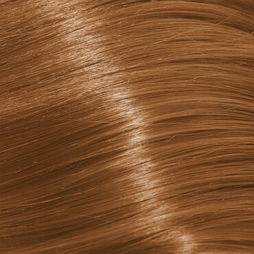 Schwarzkopf Professional Igora Color 10 Permanent Hair Colour - 8-65 Light Blonde Chocolate Gold 60ml