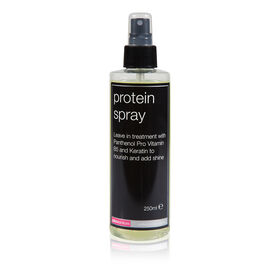 Salon Services Leave In Protein Spray 250ml