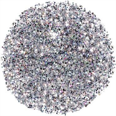 Nazila Fine Glitter Pigments - Silver 5g